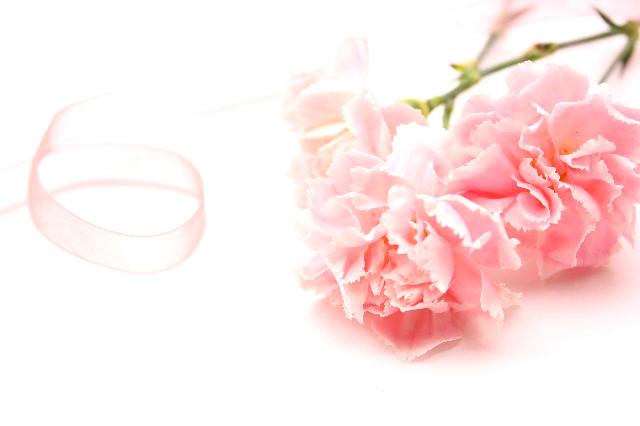 母の日プレゼント&ギフト『カーネーション』TOP